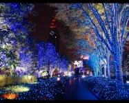 На Рождество так украшают улочки в городах Японии