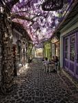 Греция, о.Лесбос