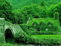 Чайный домик в Уэльсе, Великобритания