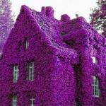 Дом в Бостоне, США