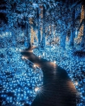 Beautiful lights, Japan