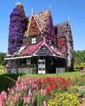 House in Dubai Miracle Garden